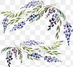 Purple Plant Flowers - Wisteria Euclidean Vector PNG