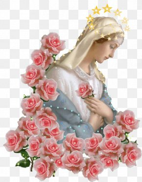 Mary - Immaculate Heart Of Mary Garden Roses Mary Help Of Christians Madonna PNG