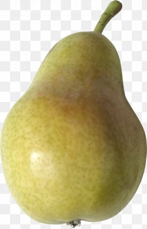 Pear Image - Asian Pear Still Life Photography Apple PNG