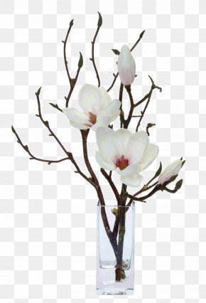 White Flower Flowers Floral Decoration Software Installed - Magnolia Artificial Flower Floral Design Floristry PNG