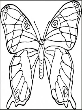 Gummy Bear Coloring Pages - Butterfly Coloring Book Animals That Hibernate Child Adult PNG