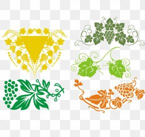Vine, Vine, Grape Leaf Vector Diagram - Picture Frame Ornament Clip Art PNG