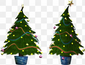 Christmas Tree - Christmas Tree Christmas Ornament Christmas Day Clip Art PNG