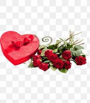 Valentine's Day - Valentine's Day Gift Girlfriend Love Woman PNG