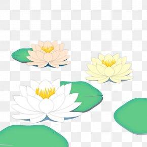 Beginning Of Summer Solar Terms Lotus Vector Material - Solar Term Lixia Clip Art PNG