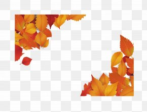 Red Maple Leaf Diagonally Border - Red Maple Maple Leaf Euclidean Vector PNG