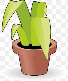 Flower Pot - Floral Vector Designs Flower Clip Art PNG