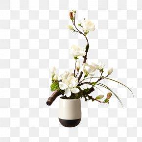 Brandy Floral Art - Flower Bouquet Floral Design Magnolia PNG