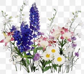 Flower Arranging Petal - Flower Plant Cut Flowers Bouquet Delphinium PNG