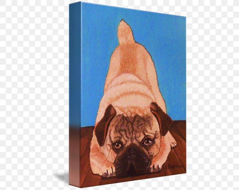 Pug Dog Breed Companion Dog Puppy Toy Dog, PNG, 470x650px, Pug, Breed, Carnivoran, Companion Dog, Crossbreed Download Free