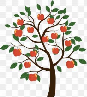 Vector Apple Tree - Fruit Tree Euclidean Vector PNG