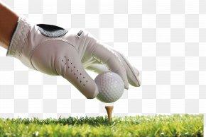 Play Golf - Golf Ball PNG