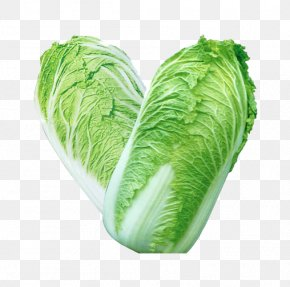 Two Chinese Cabbage - Chinese Cuisine Chinese Cabbage Vegetable Broccoli PNG