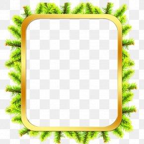 Bark Frame Cliparts - Picture Frame Tree Bark Film Frame Clip Art PNG