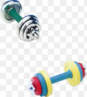 Dumbbell - Dumbbell Physical Fitness Bodybuilding PNG
