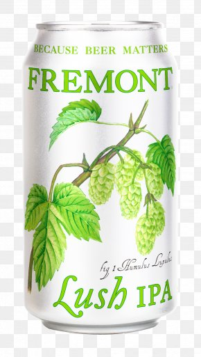 Beer - India Pale Ale Beer Fremont Founder's All Day IPA Founders Brewing Company PNG
