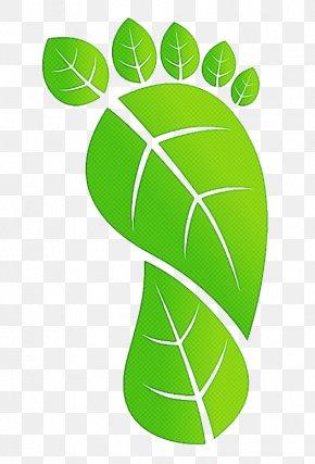 Logo Symbol - Green Leaf Plant Symbol Logo PNG