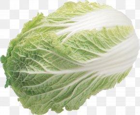 Salad Image - Salad Iceberg Lettuce Produce PNG