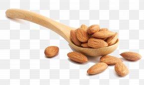 Almond-kind Photography - Almond Nut Stock Photography Illustration PNG