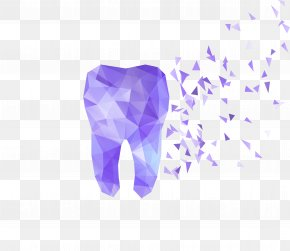 Colorful Abstract Perspective Tooth Fragments - Human Tooth Dentistry Illustration PNG