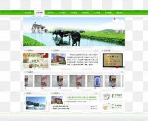Web Design - Web Design Web Template User Interface PNG
