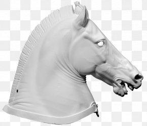Horse - Horse Halter 3D Computer Graphics Wavefront .obj File 3D Scanner PNG