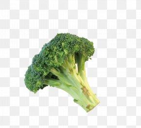 Broccoli - Broccolini Romanesco Broccoli Cauliflower PNG