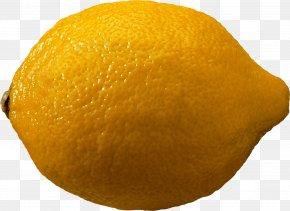 Lemon - Clementine Chenpi Lemon Citron Citrus Junos PNG