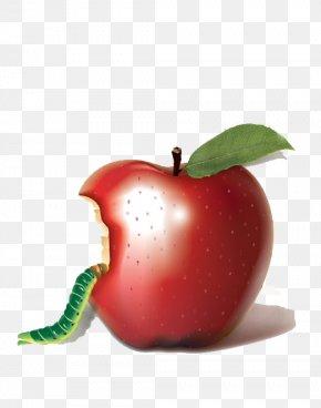 Bitten Apple - Apple Bobbing Biting Auglis PNG