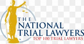 Lawyer - Personal Injury Lawyer Criminal Defense Lawyer Trial PNG