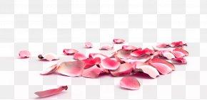Peach Petals,festival,Flowers,Fall Decoration,Pink Creative,Petals Wedding - Rose Petal Nail Exfoliation Flower PNG