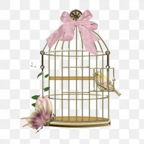 A Bird Cage - Birdcage Birdcage PNG