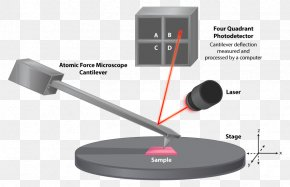 Microscope - Atomic Force Microscopy Scanning Electron Microscope Microorganism PNG