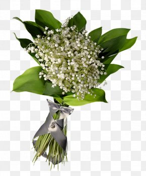 Lily Of The Valley - Lily Of The Valley PhotoFiltre Clip Art PNG
