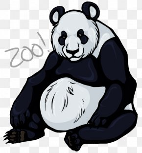 Giant Panda - Giant Panda Asian Black Bear Animal Beaver PNG