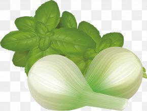 Green Leaves And Onion Material - Leaf Vegetable Mint PNG