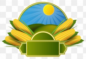 MAIZE Vector - Corn On The Cob Maize Corncob Clip Art PNG