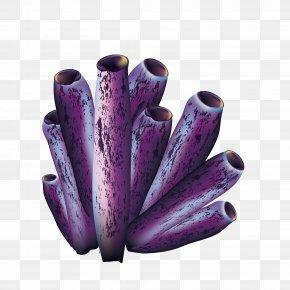 Purple Coral - Purple Icon PNG