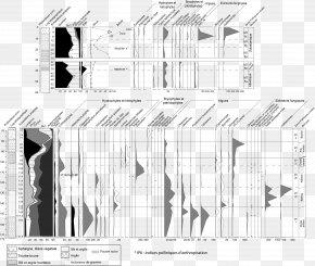 M Graphic Design DiagramBetula Illustration - Paper Architecture Black & White PNG