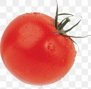 Tomato - Cherry Tomato Cheese And Onion Pie Icon PNG