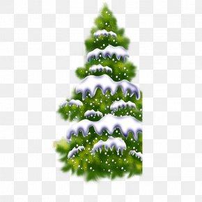 Christmas Tree - Christmas Tree Computer File PNG