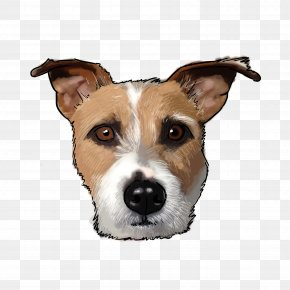 A Dog With A Gold Ingot - Dog Breed Jack Russell Terrier Greyhound Companion Dog PNG