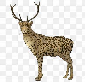 Reindeer - Reindeer National Geographic Animal Jam White-tailed Deer Elk Adrien Agreste PNG