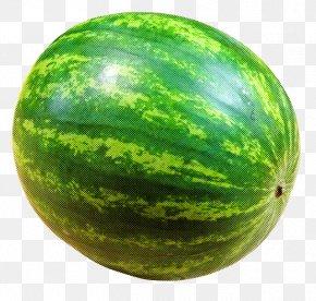 Vegetable Citrullus - Watermelon PNG