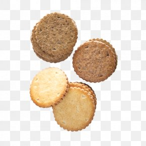 Coffee Biscuits - Muffin Cookie M PNG