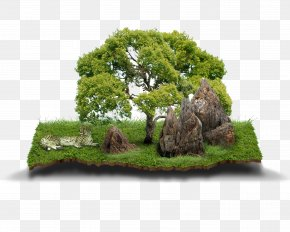 Stone Mountain Material Bonsai - Agricultural Land Agriculture House Land Lot PNG