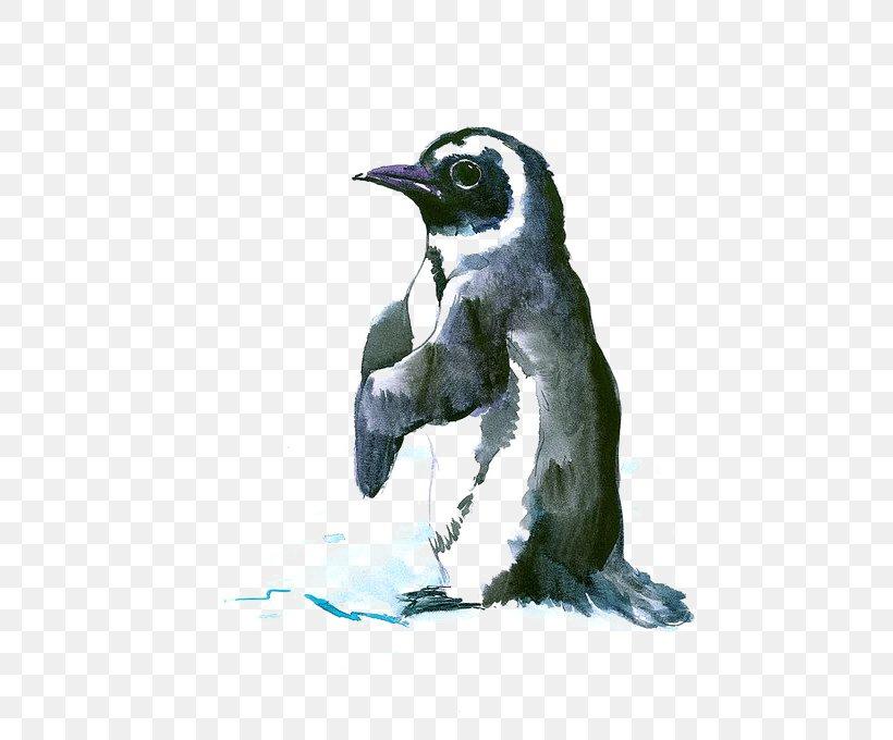 Penguin Bird Antarctic Drawing Painting, PNG, 504x680px, Penguin, Animal, Beak, Bird, Chinstrap Penguin Download Free