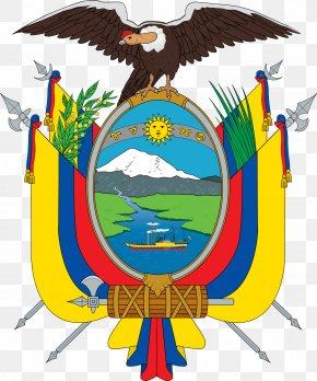 Usa Gerb - Flag Of Ecuador Coat Of Arms Of Ecuador National Symbols Of Ecuador PNG