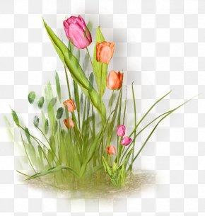 Tulip - Floral Design Tulip Flower Painting Clip Art PNG