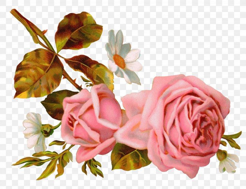 Victorian Era Rose Flower Bokmxe4rke Clip Art Png 4860x3734px Victorian Era Artificial Flower Birthday Cut Flowers